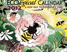 2012 ECO<em>logical</em> Calendar