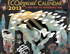 2013 ECO<em>logical</em> Calendar
